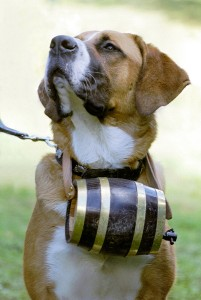 St_Bernard_with_barrel_alt